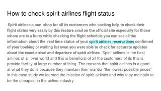 spirit airline flight status