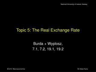 Topic 5: The Real Exchange Rate