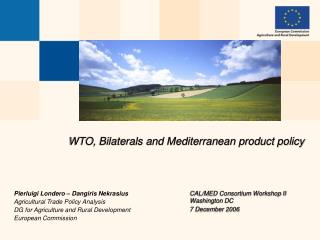 WTO, Bilaterals and Mediterranean product policy