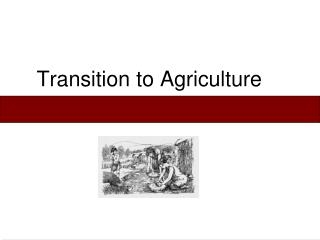 Transition to Agriculture