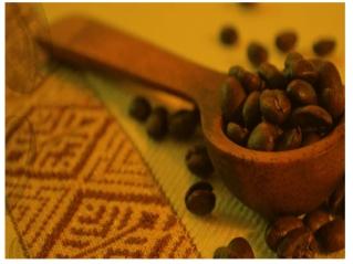 Coffee beans Australia