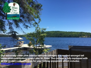 Cottages in ontario canada   Ontario cottage rentals by owner