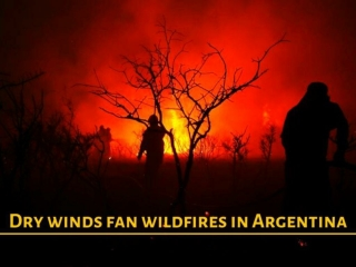 Dry winds fan wildfires in Argentina