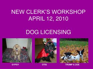 NEW CLERK'S WORKSHOP APRIL 12, 2010 DOG LICENSING