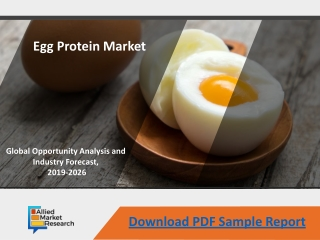 Egg Protein Market - Current and Future Trends, 2026