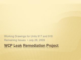 WCP Leak Remediation Project