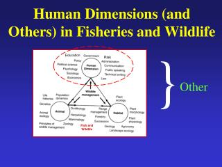 Human Dimensions (and Others) in Fisheries and Wildlife