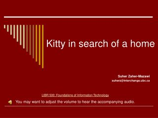 Kitty in search of a home