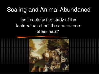 Scaling and Animal Abundance