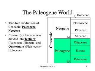 The Paleogene World
