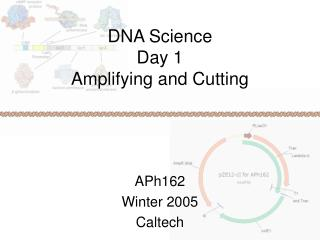 DNA Science Day 1 Amplifying and Cutting