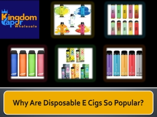 Why Are Disposable E Cigs So Popular?