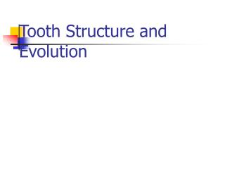 Tooth Structure and Evolution