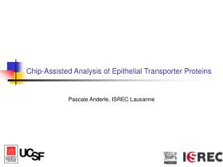 Chip-Assisted Analysis of Epithelial Transporter Proteins