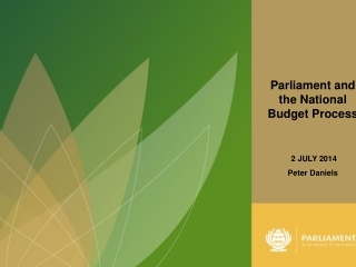THE ROLE OF THE MINISTRY OF FINANCE IN THE BUDGET PROCESS