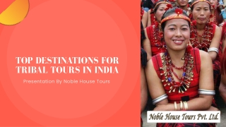 Top Destinations For Tribal Tours In India