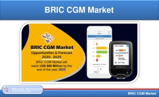 BRIC CGM Market, Forecast By Users & CGM Components | Renub Research