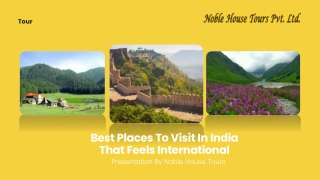 Best Places To Visit In India That Feels International