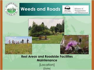 Rest Areas and Roadside Facilities Maintenance [Location] [Date]