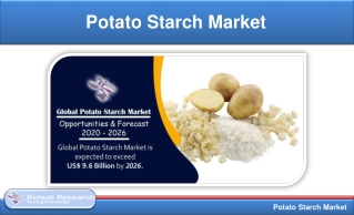 Potato Starch Market, Volume & Global Forecast, by Products