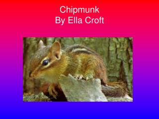 Chipmunk By Ella Croft