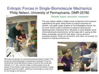 Entropic Forces in Single-Biomolecule Mechanics Philip Nelson, University of Pennsylvania, DMR- 25780