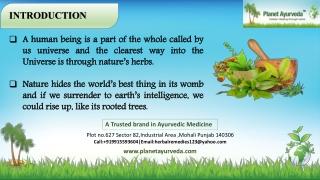 Ayurvedic Treatment Centre in India - Planet Ayurveda