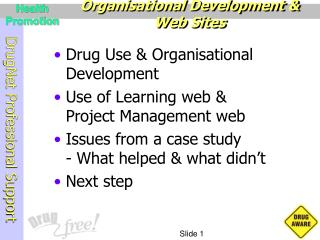 Organisational Development & Web Sites