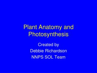 Plant Anatomy and Photosynthesis
