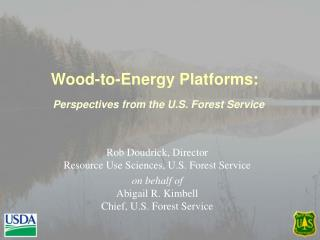 Wood-to-Energy Platforms: