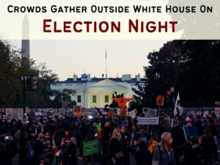 Crowds gather outside White House on election night