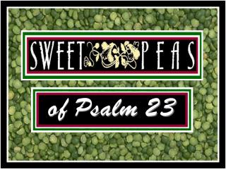 of Psalm 23