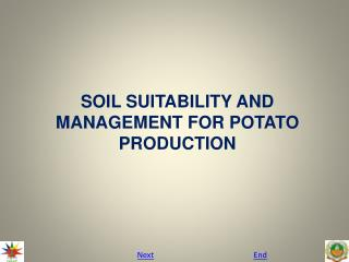 SOIL SUITABILITY AND MANAGEMENT FOR POTATO PRODUCTION