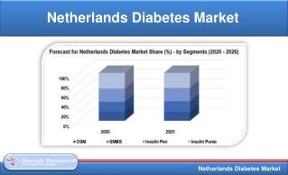 Netherlands Diabetes Market will be USD 4.48 Billion by 2025