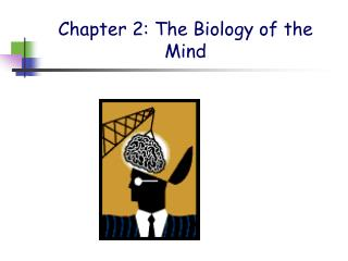 Chapter 2: The Biology of the Mind