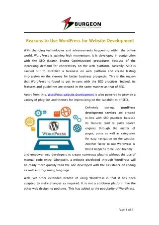 Reasons to Use WordPress for Website Development