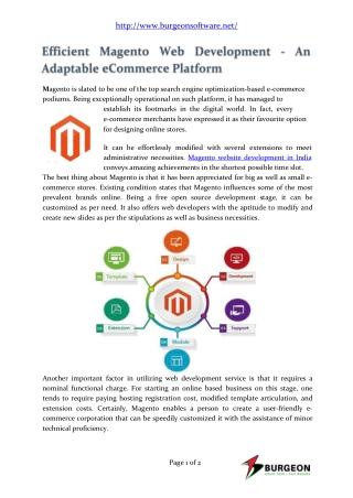 Efficient Magento Web Development Company India