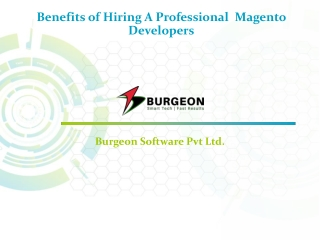 Benefits of Hiring A Professional Magento Developer in India