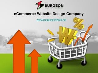 eCommerce Website Design - Experienced eCommerce Designers