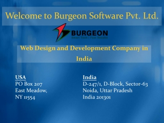 Benefits of hiring Burgeon Software as a professional web designing company in India