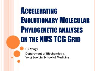 Accelerating Evolutionary Molecular Phylogenetic analyses on the NUS TCG Grid