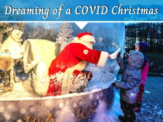 Dreaming of a COVID Christmas