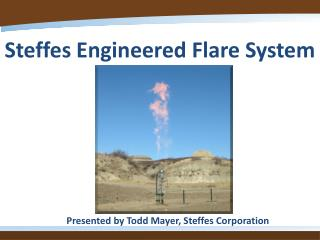 Steffes Engineered Flare System