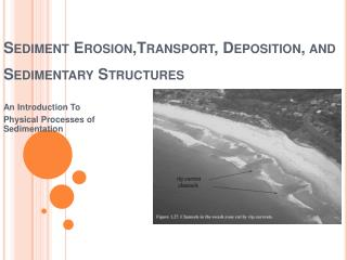 Sediment  Erosion,Transport , Deposition, and Sedimentary Structures