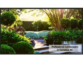 Professional Landscapers In Cornelius NC