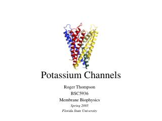 Potassium Channels