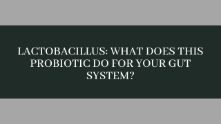 Lactobacillus: What Does This Probiotic Do For Your Gut System