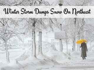 Winter storm dumps snow on Northeast