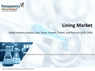 Lining Market| Global Industry Report, 2030