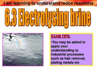 6.3 Electrolysing brine